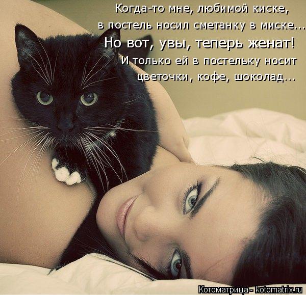 Котоматрица: в постель носил сметанку в миске... Но вот, увы, теперь женат! И только ей в постельку носит цветочки, кофе, шоколад... Когда-то мне, любимой кис?