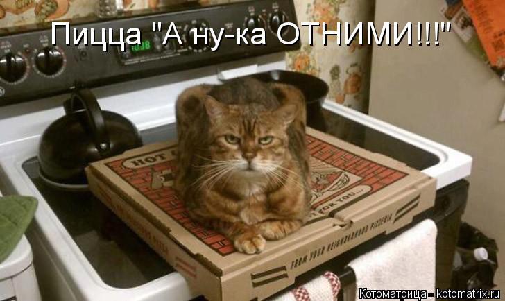 """Котоматрица: Пицца """"А ну-ка ОТНИМИ!!!"""""""