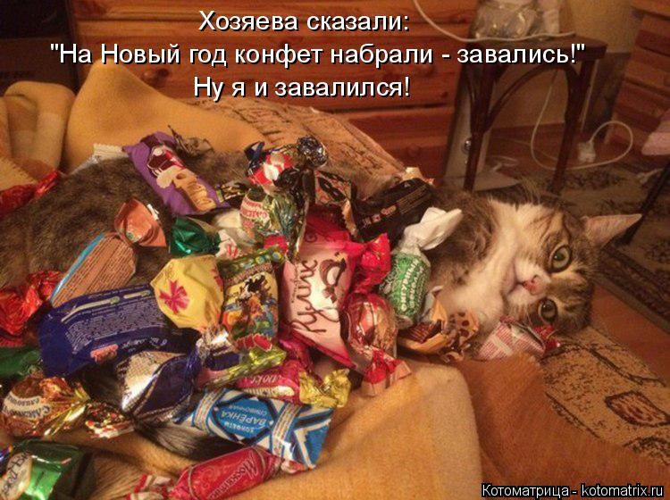 """Котоматрица: Хозяева сказали:  """"На Новый год конфет набрали - завались!"""" Ну я и завалился!"""