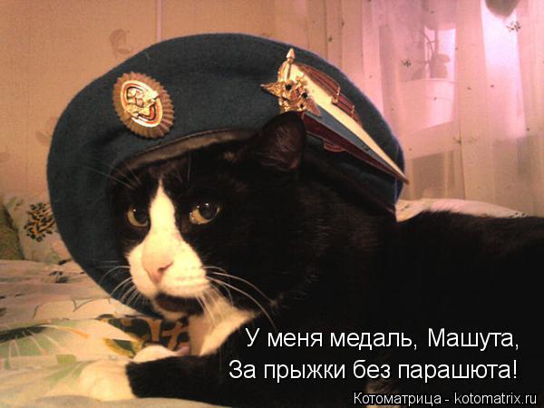 Котоматрица: У меня медаль, Машута, За прыжки без парашюта!