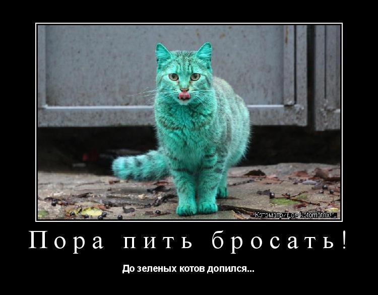 Котоматрица: Пора пить бросать! До зеленых котов допился...