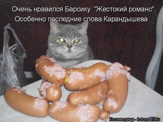 """Котоматрица: Очень нравился Барсику  """"Жестокий романс"""". Особенно последние слова Карандышева"""