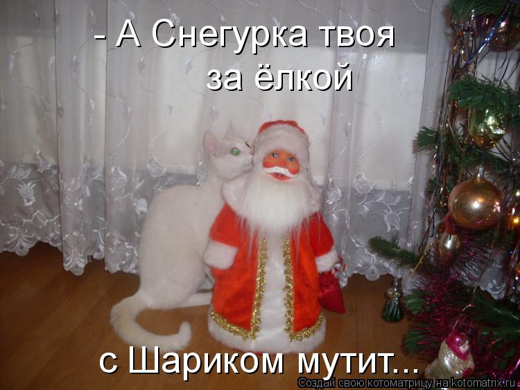Котоматрица: - А Снегурка твоя за ёлкой с Шариком мутит...