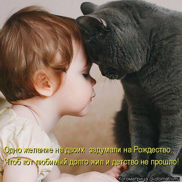 Котоматрица: Одно желание на двоих  задумали на Рождество... Чтоб кот любимый долго жил и детство не прошло!