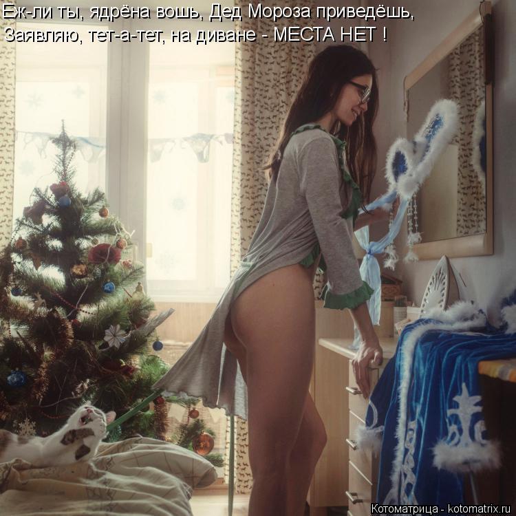 Котоматрица: Еж-ли ты, ядрёна вошь, Дед Мороза приведёшь, Заявляю, тет-а-тет, на диване - МЕСТА НЕТ !