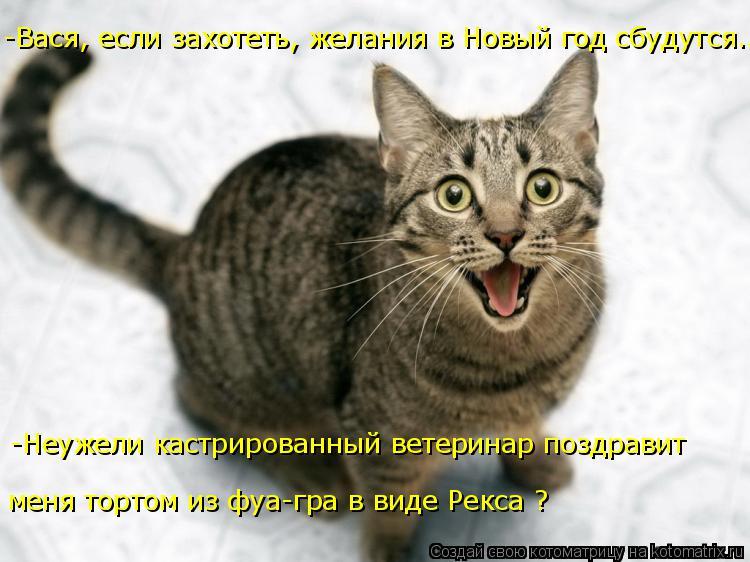 Котоматрица: -Неужели кастрированный ветеринар поздравит -Вася, если захотеть, желания в Новый год сбудутся... меня тортом из фуа-гра в виде Рекса ?