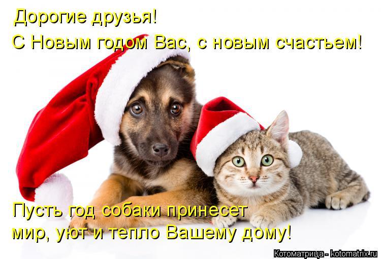 Котоматрица: Дорогие друзья!  С Новым годом Вас, с новым счастьем! Пусть год собаки принесет  мир, уют и тепло Вашему дому!