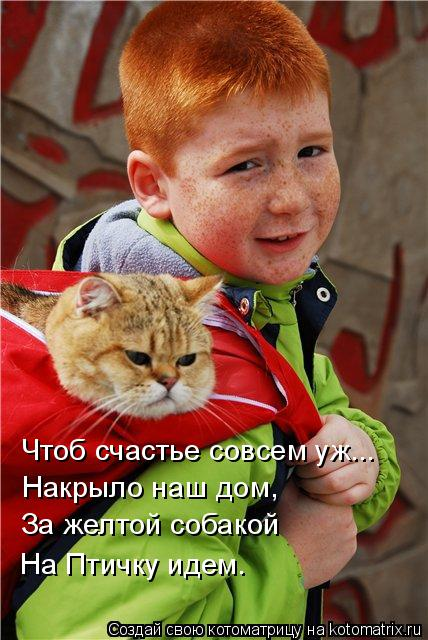 Котоматрица: Чтоб счастье совсем уж... Накрыло наш дом, За желтой собакой На Птичку идем.