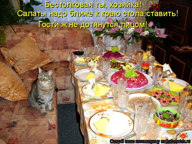 Котоматрица: - Бестолковая ты, хозяйка!  Салаты надо ближе к краю стола ставить! Гости ж не дотянутся лицом!