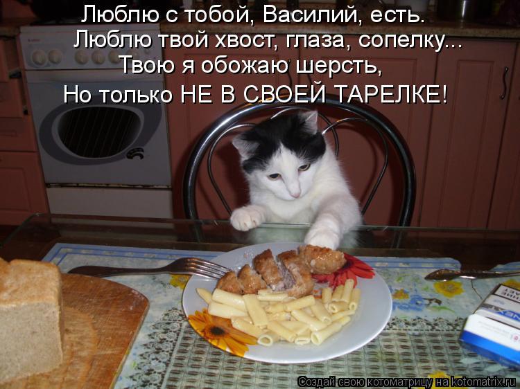 Котоматрица: Люблю с тобой, Василий, есть. Люблю твой хвост, глаза, сопелку... Твою я обожаю шерсть, Но только НЕ В СВОЕЙ ТАРЕЛКЕ!