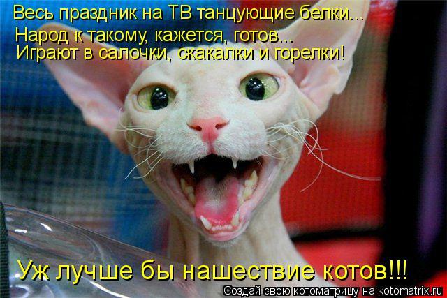 Котоматрица: Весь праздник на ТВ танцующие белки... Народ к такому, кажется, готов... Играют в салочки, скакалки и горелки! Уж лучше бы нашествие котов!!!