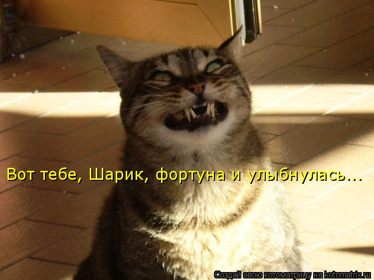 Котоматрица: Вот тебе, Шарик, фортуна и улыбнулась...