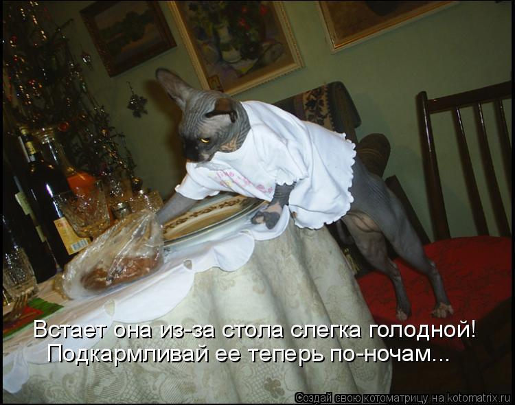 Котоматрица: Встает она из-за стола слегка голодной! Подкармливай ее теперь по-ночам...