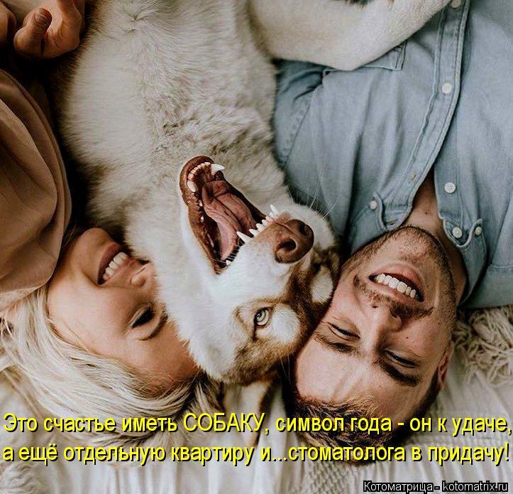 Котоматрица: Это счастье иметь СОБАКУ, символ года - он к удаче, а ещё отдельную квартиру и...стоматолога в придачу!