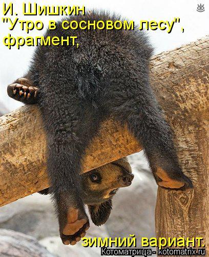 """Котоматрица: И. Шишкин """"Утро в сосновом лесу"""", фрагмент, зимний вариант."""