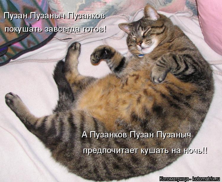 Котоматрица: Пузан Пузаныч Пузанков покушать завсегда готов! А Пузанков Пузан Пузаныч предпочитает кушать на ночь!!