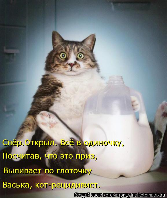 Котоматрица: Выпивает по глоточку Васька, кот-рецидивист. Спёр.Открыл. Всё в одиночку, Посчитав, что это приз,