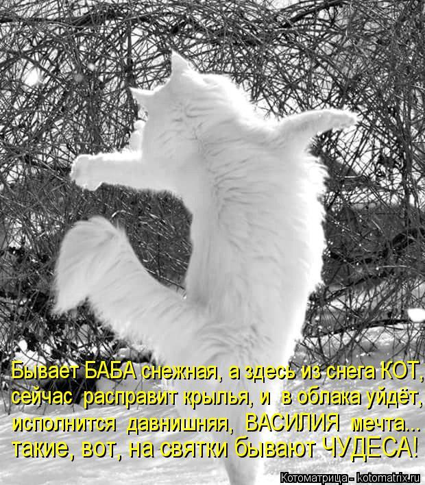 Котоматрица: Бывает БАБА снежная, а здесь из снега КОТ, сейчас  расправит крылья, и  в облака уйдёт, исполнится  давнишняя,  ВАСИЛИЯ  мечта... такие, вот, на с
