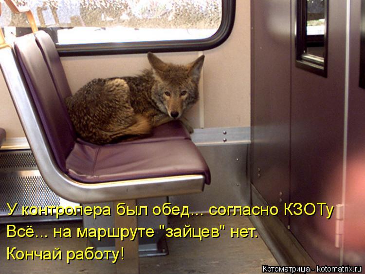 """Котоматрица: У контролера был обед... согласно КЗОТу Всё... на маршруте """"зайцев"""" нет.  Кончай работу!"""