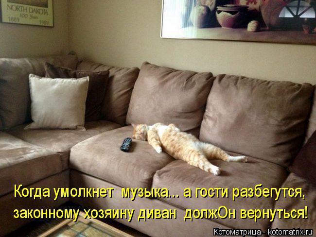 Котоматрица: Когда умолкнет  музыка... а гости разбегутся, законному хозяину диван  должОн вернуться!