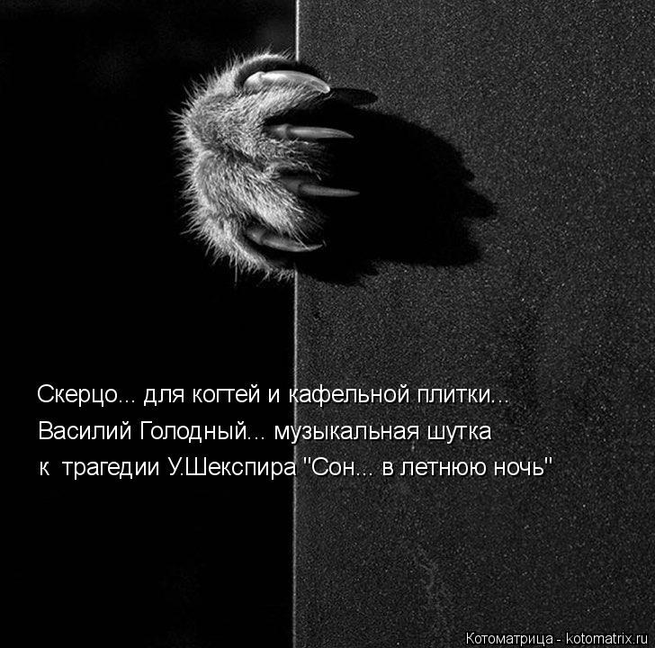 """Котоматрица: Скерцо... для когтей и кафельной плитки... Василий Голодный... музыкальная шутка к  трагедии У.Шекспира """"Сон... в летнюю ночь"""""""