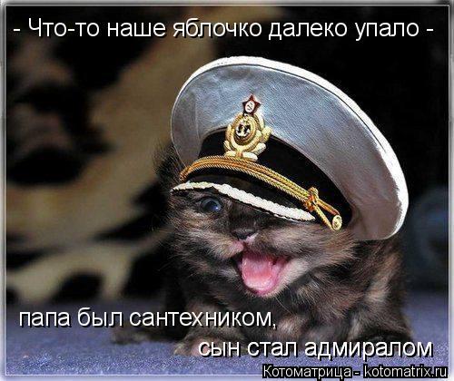 Котоматрица: - Что-то наше яблочко далеко упало -  папа был сантехником,  сын стал адмиралом сын стал адмиралом