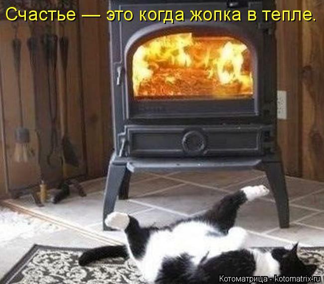 Котоматрица: Счастье — это когда жопка в тепле.