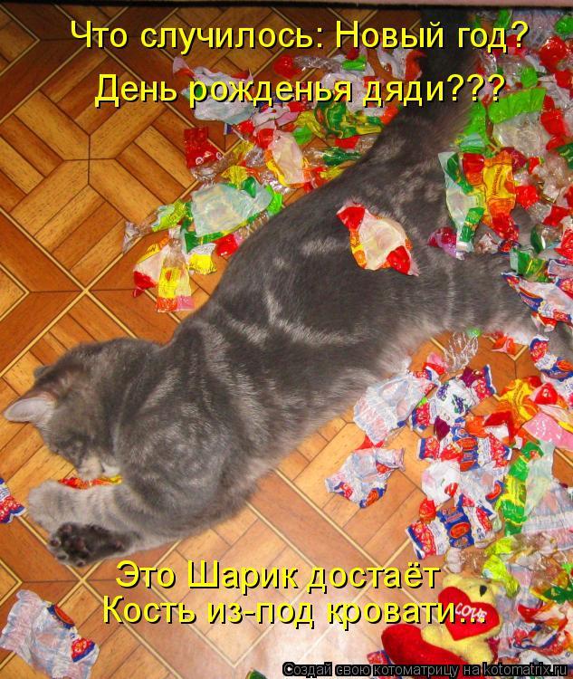 Котоматрица: Что случилось: Новый год? День рожденья дяди??? Это Шарик достаёт Кость из-под кровати...