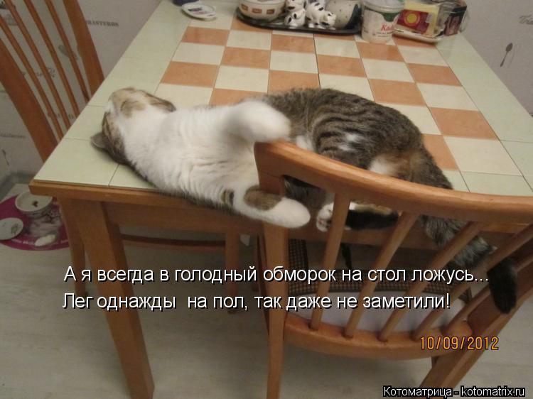 Котоматрица: А я всегда в голодный обморок на стол ложусь... Лег однажды  на пол, так даже не заметили!