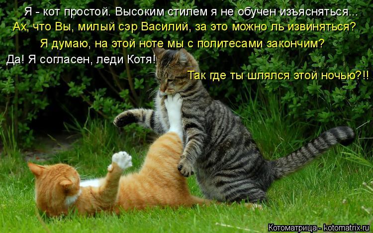 Котоматрица: Я - кот простой. Высоким стилем я не обучен изъясняться... Ах, что Вы, милый сэр Василий, за это можно ль извиняться? Я думаю, на этой ноте мы с п?