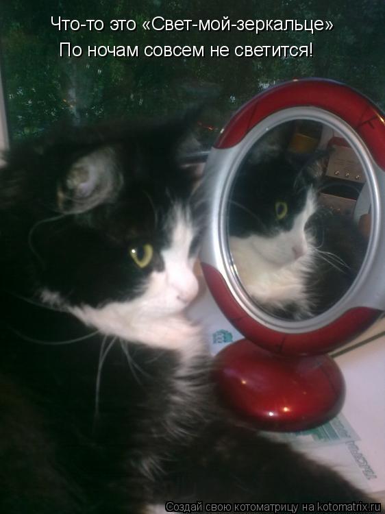 Котоматрица: Что-то это «Свет-мой-зеркальце» По ночам совсем не светится!
