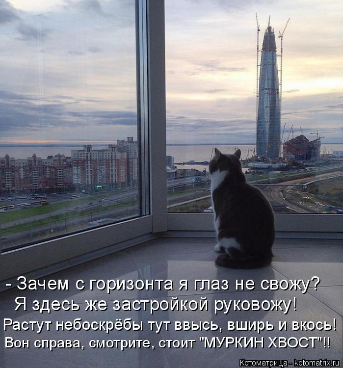 """Котоматрица: - Зачем с горизонта я глаз не свожу? Я здесь же застройкой руковожу! Растут небоскрёбы тут ввысь, вширь и вкось! Вон справа, смотрите, стоит """"М?"""