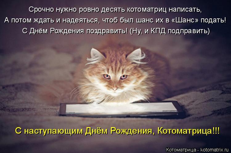 Котоматрица: Срочно нужно ровно десять котоматриц написать, А потом ждать и надеяться, чтоб был шанс их в «Шанс» подать! С Днём Рождения поздравить! (Ну, и