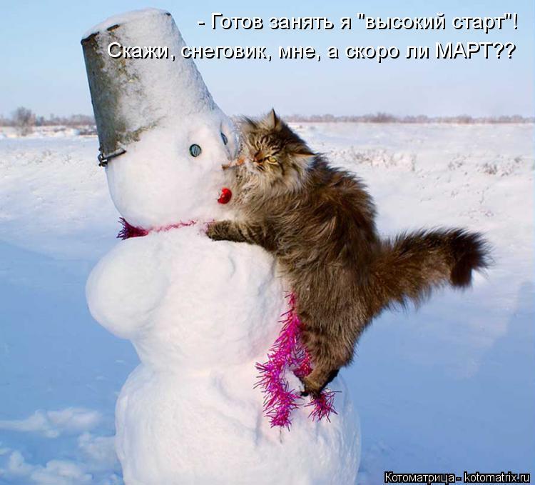 """Котоматрица: - Готов занять я """"высокий старт""""! Скажи, снеговик, мне, а скоро ли МАРТ??"""