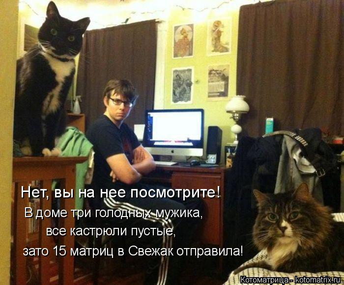 Котоматрица: В доме три голодных мужика,  Нет, вы на нее посмотрите! все кастрюли пустые,  зато 15 матриц в Свежак отправила!