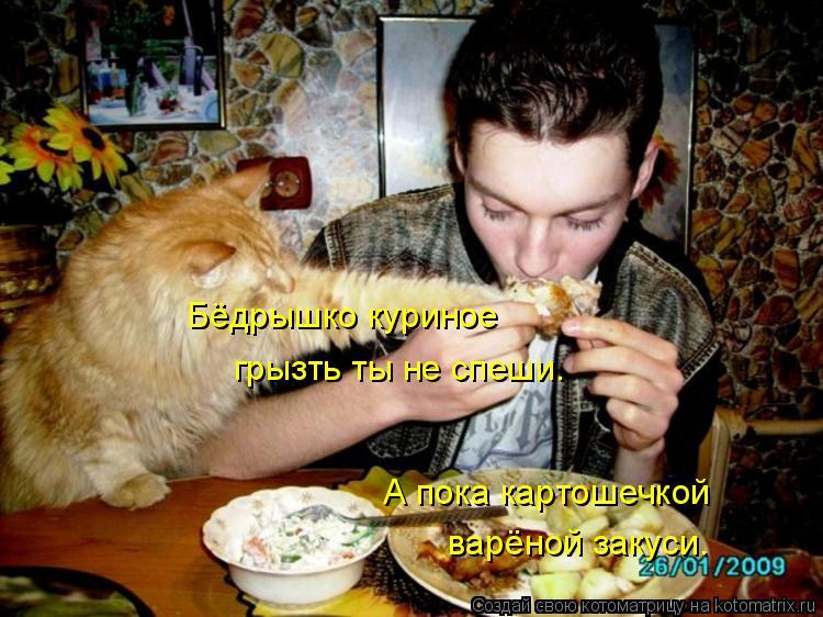 Котоматрица: Бёдрышко куриное грызть ты не спеши. А пока картошечкой варёной закуси.