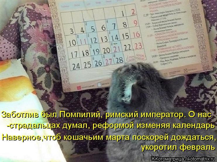 Котоматрица: Заботлив был Помпилий, римский император. О нас -страдальцах думал, реформой изменяя календарь Наверное,чтоб кошачьим марта поскорей дожда
