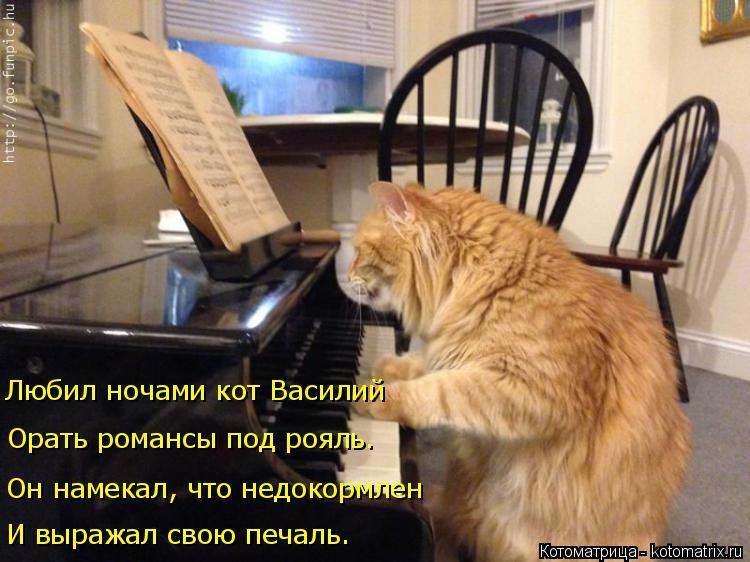 Котоматрица: И выражал свою печаль. Он намекал, что недокормлен Орать романсы под рояль. Любил ночами кот Василий