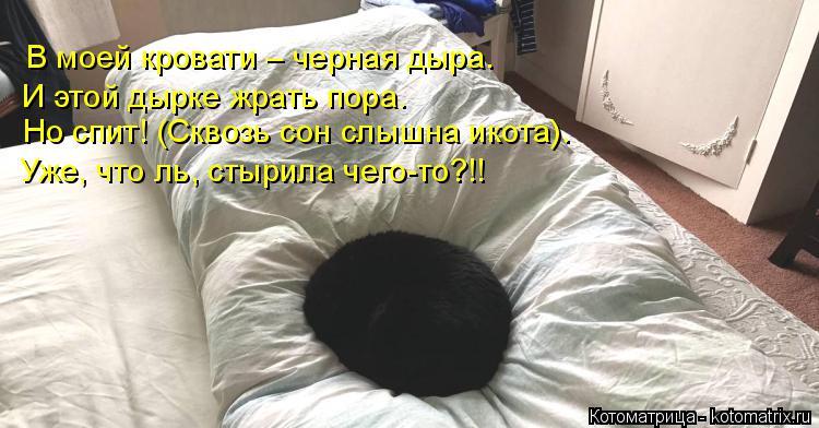 Котоматрица: В моей кровати – черная дыра. И этой дырке жрать пора. Но спит! (Сквозь сон слышна икота). Уже, что ль, стырила чего-то?!!