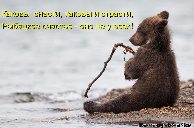 Котоматрица: Каковы  снасти, таковы и страсти, Рыбацкое счастье - оно не у всех!