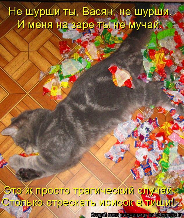 Котоматрица: Не шурши ты, Васян, не шурши. И меня на заре ты не мучай. Это ж просто трагический случай - Столько стрескать ирисок в тиши!...
