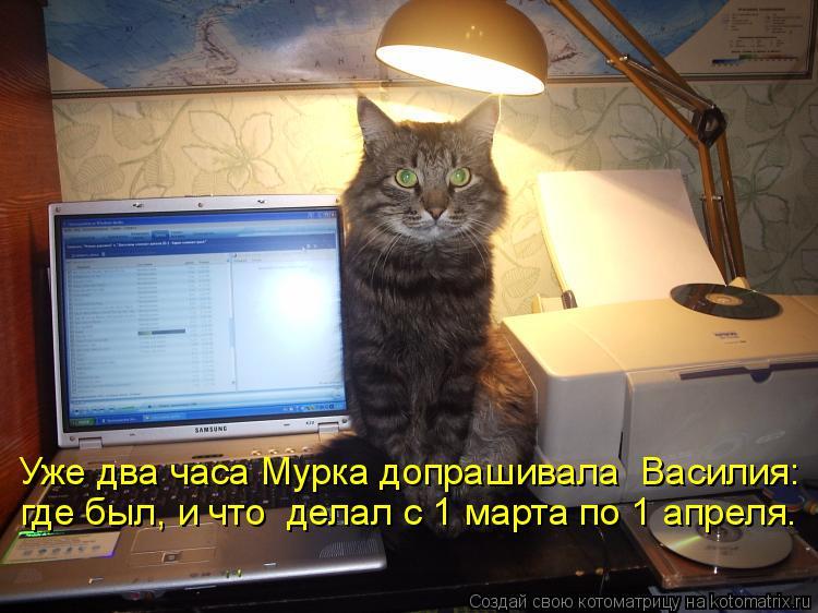 Котоматрица: Уже два часа Мурка допрашивала  Василия: где был, и что  делал с 1 марта по 1 апреля.