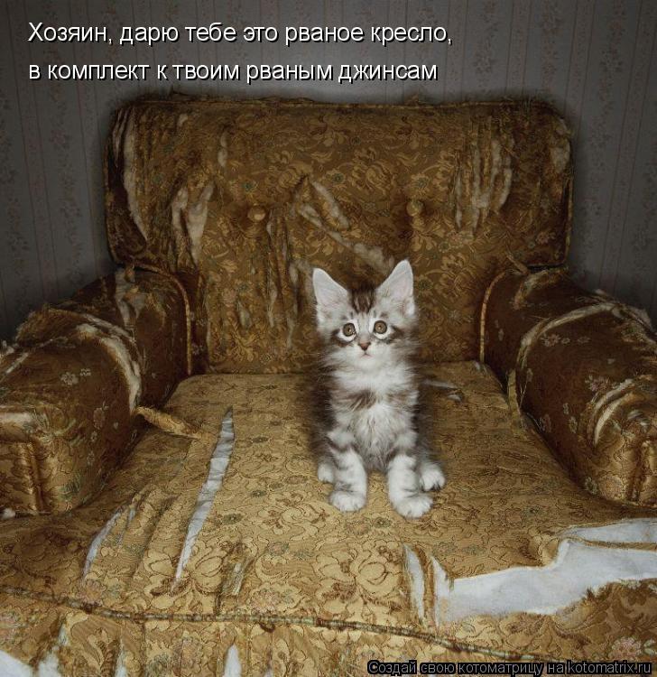 Котоматрица: Хозяин, дарю тебе это рваное кресло, в комплект к твоим рваным джинсам