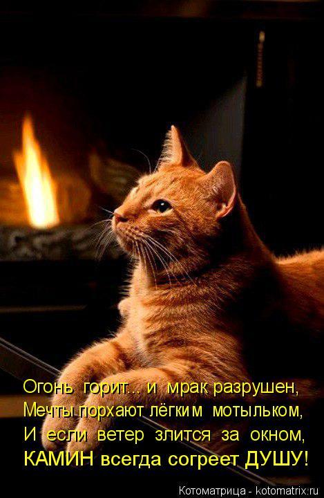 Котоматрица: Огонь  горит... и  мрак разрушен, Мечты порхают лёгким  мотыльком, И  если  ветер  злится  за  окном, КАМИН всегда согреет ДУШУ!