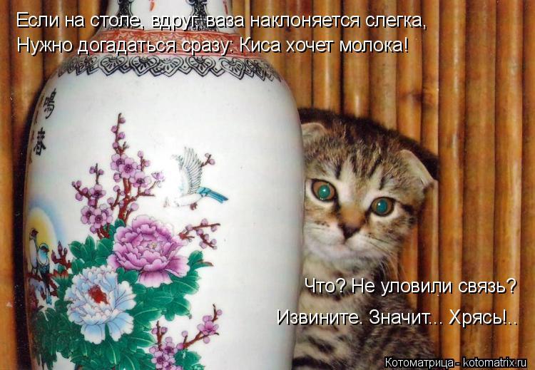 Котоматрица: Если на столе, вдруг, ваза наклоняется слегка, Нужно догадаться сразу: Киса хочет молока! Что? Не уловили связь? Извините. Значит... Хрясь!..