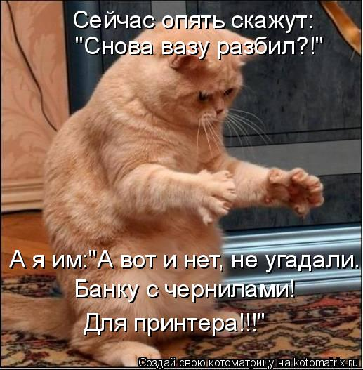 """Котоматрица: А я им:""""А вот и нет, не угадали... Банку с чернилами! Для принтера!!!"""" Сейчас опять скажут: """"Снова вазу разбил?!"""""""