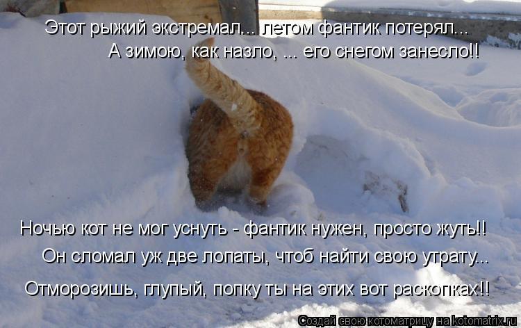 Котоматрица: Этот рыжий экстремал... летом фантик потерял... А зимою, как назло, ... его снегом занесло!! Ночью кот не мог уснуть - фантик нужен, просто жуть!! О