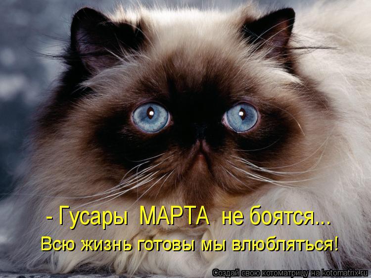 Котоматрица: - Гусары  МАРТА  не боятся... Всю жизнь готовы мы влюбляться! Всю жизнь готовы мы влюбляться!