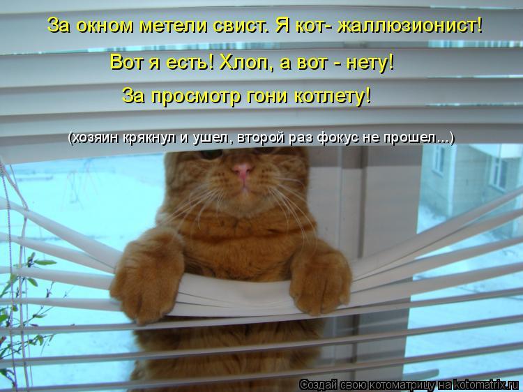 Котоматрица: За окном метели свист. Я кот- жаллюзионист! Вот я есть! Хлоп, а вот - нету! За просмотр гони котлету! (хозяин крякнул и ушел, второй раз фокус не
