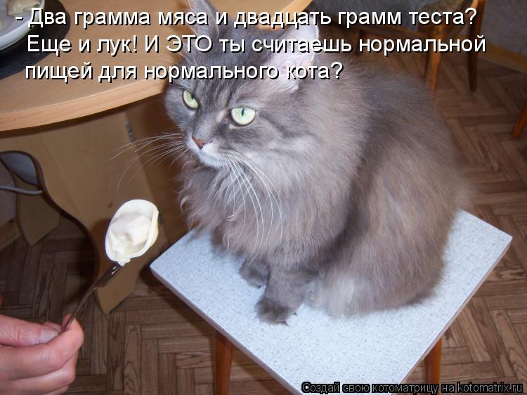 Котоматрица: - Два грамма мяса и двадцать грамм теста?  Еще и лук! И ЭТО ты считаешь нормальной  пищей для нормального кота?